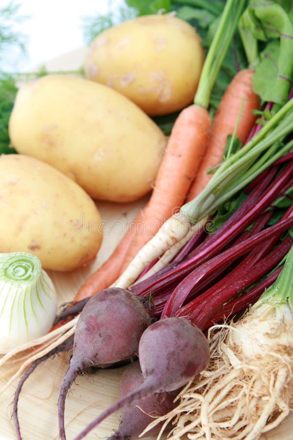 新鲜的新的蔬菜 免版税库存图片