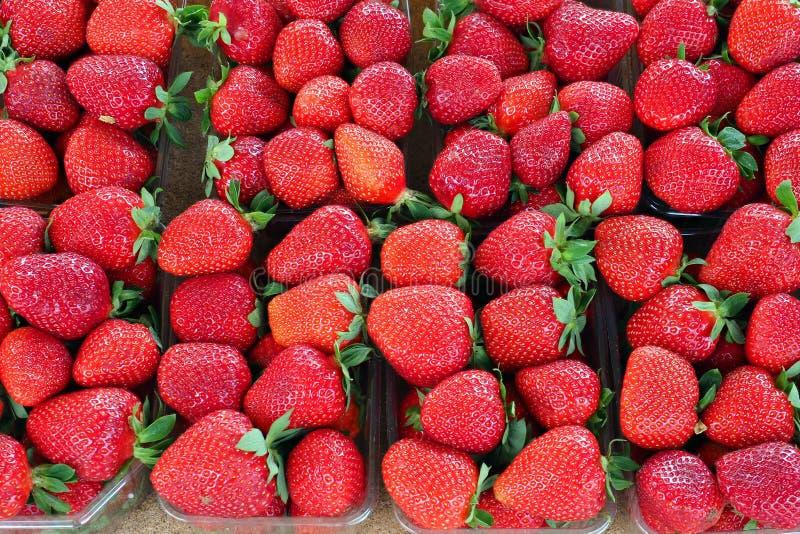 新鲜的明亮的红色草莓在市场上 免版税库存照片