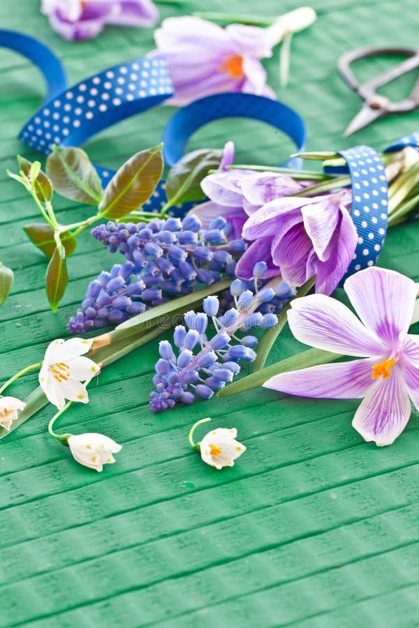 新鲜的春天花 库存照片