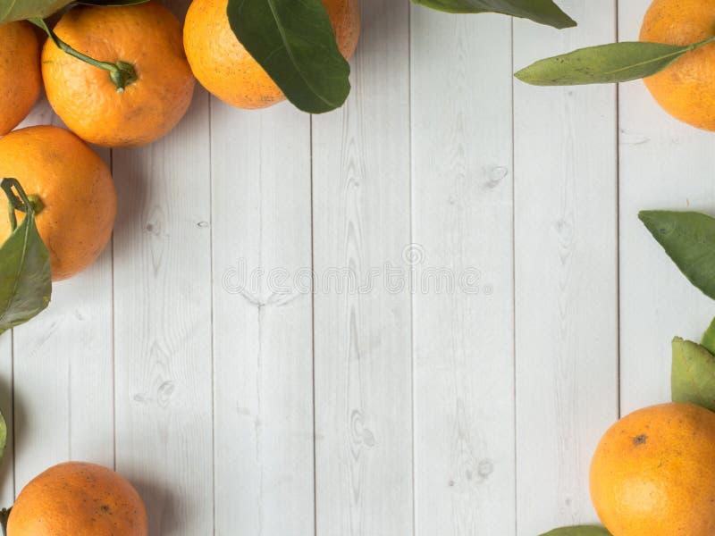 新鲜的普通话或蜜桔与词根和叶子在白色木背景拷贝空间 免版税库存照片