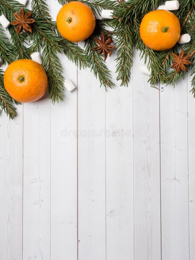 新鲜的普通话或蜜桔与词根和叶子在白色木背景拷贝空间 库存图片