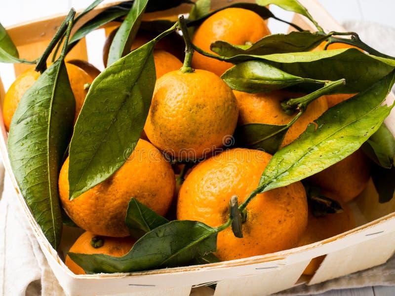 新鲜的普通话或蜜桔与词根和叶子在箱子在白色木背景 免版税库存图片