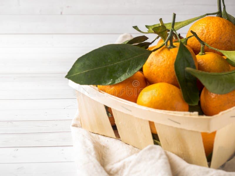 新鲜的普通话或蜜桔与词根和叶子在箱子在白色木背景 图库摄影