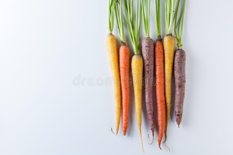 新鲜的有机在白色Backg隔绝的红萝卜未加工的五颜六色的束 免版税库存照片