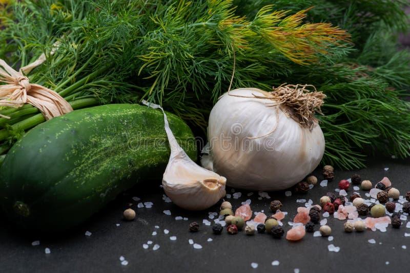 新鲜的有机大蒜、黄瓜、莳萝、粗糙的海和喜马拉雅桃红色盐,在黑暗的彩虹干胡椒 免版税库存照片