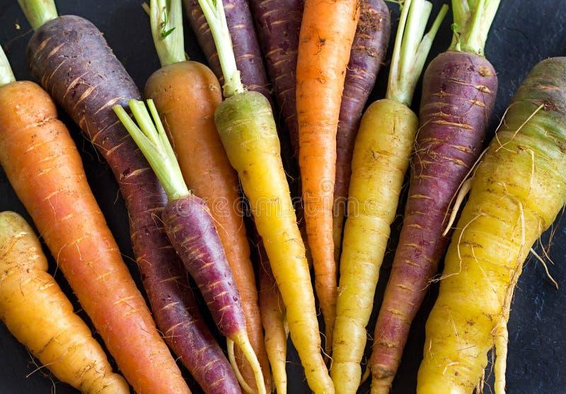 新鲜的有机彩虹红萝卜 库存照片