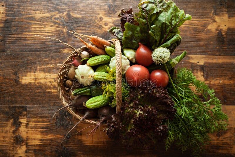 新鲜的有机未加工的蔬菜食物 自然农业农场,健康收获 免版税库存图片