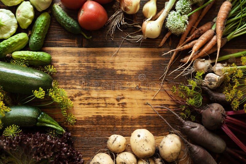 新鲜的有机未加工的蔬菜食物 自然农业农场,健康收获 库存图片