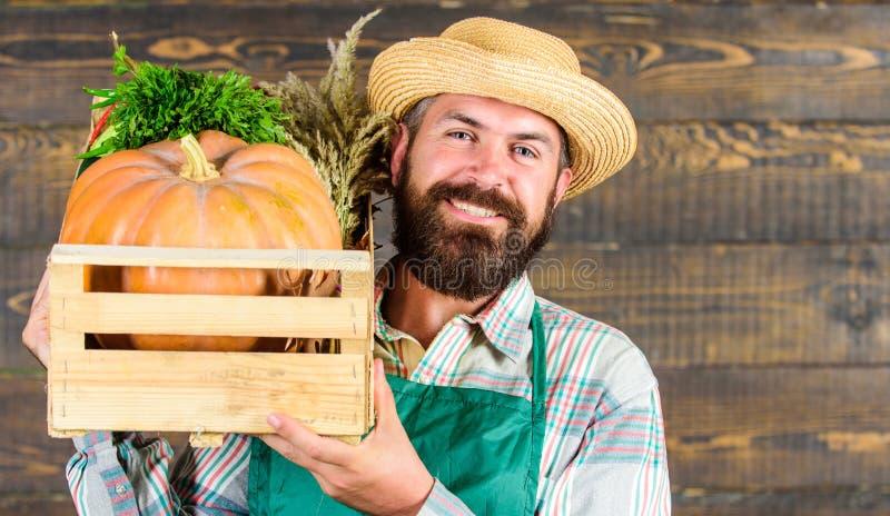 草帽农夫_新鲜的有机菜箱子 农夫草帽交付新鲜蔬菜 新鲜蔬菜送货业务 快乐的人