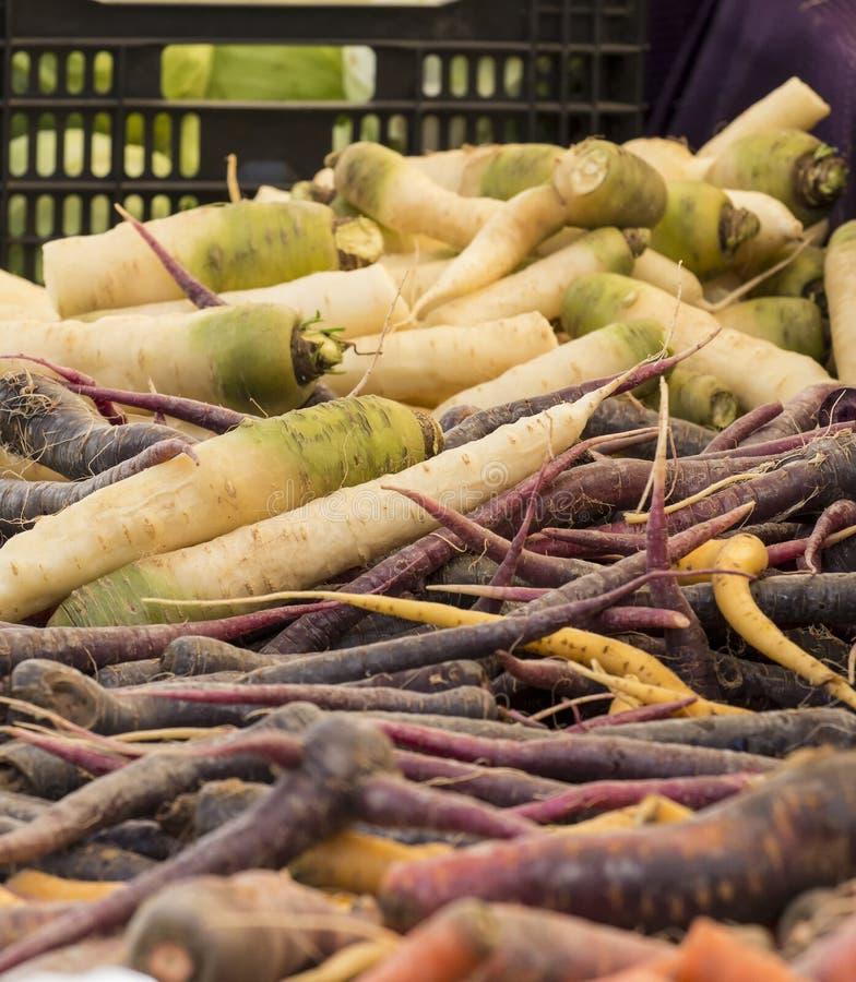 新鲜的有机菜-堆在农夫的根菜类 图库摄影