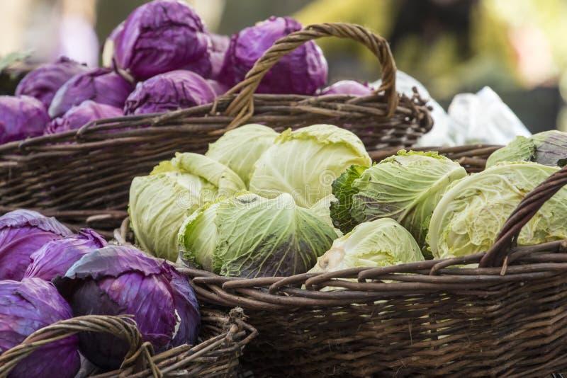 新鲜的有机菜-堆绿色和紫色圆白菜 免版税图库摄影