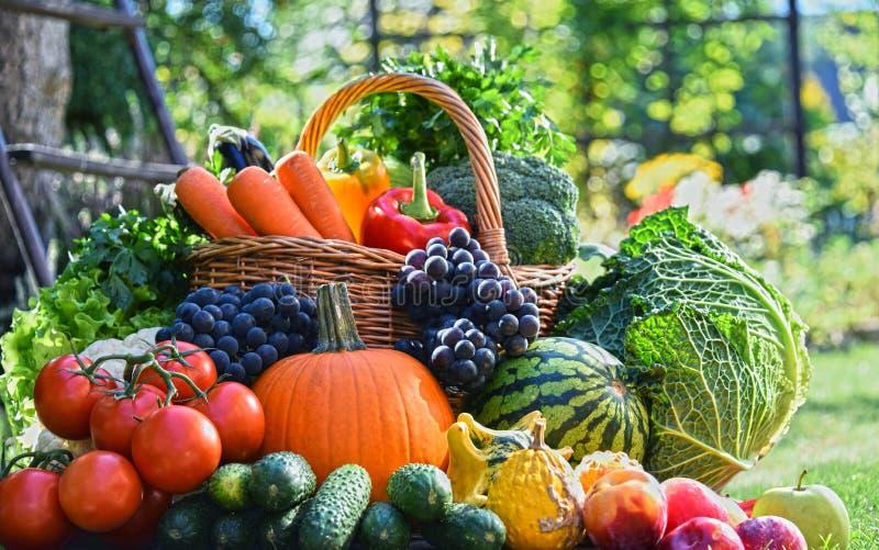 新鲜的有机蔬菜和水果品种在庭院里 免版税图库摄影
