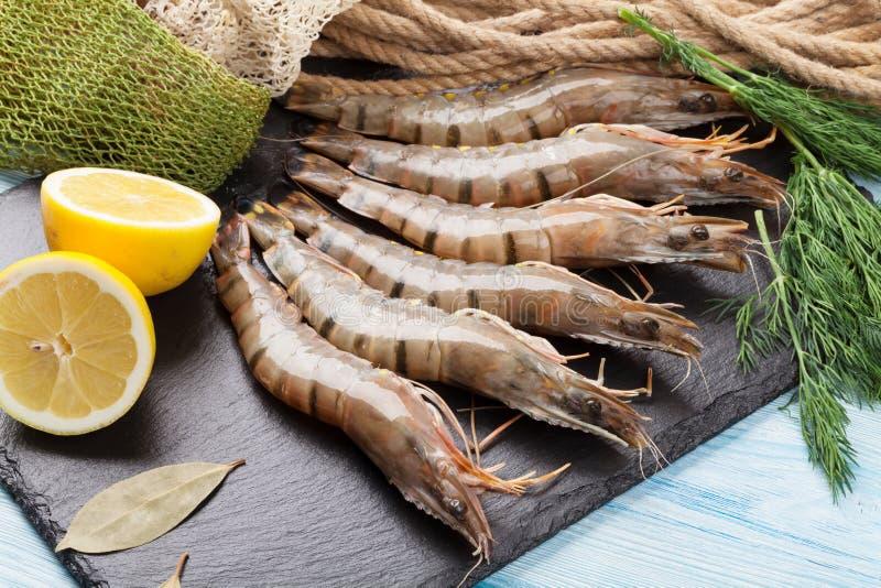 新鲜的未加工的老虎大虾和捕鱼设备 图库摄影