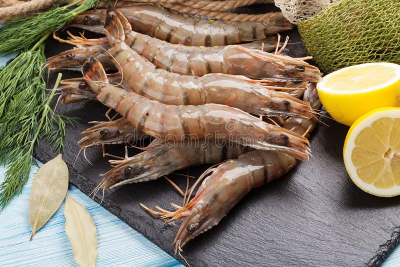 新鲜的未加工的老虎大虾和捕鱼设备 免版税库存照片