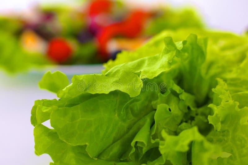 新鲜的未加工的蔬菜沙拉用蕃茄和绿色莴苣在木板材在白色背景 图库摄影