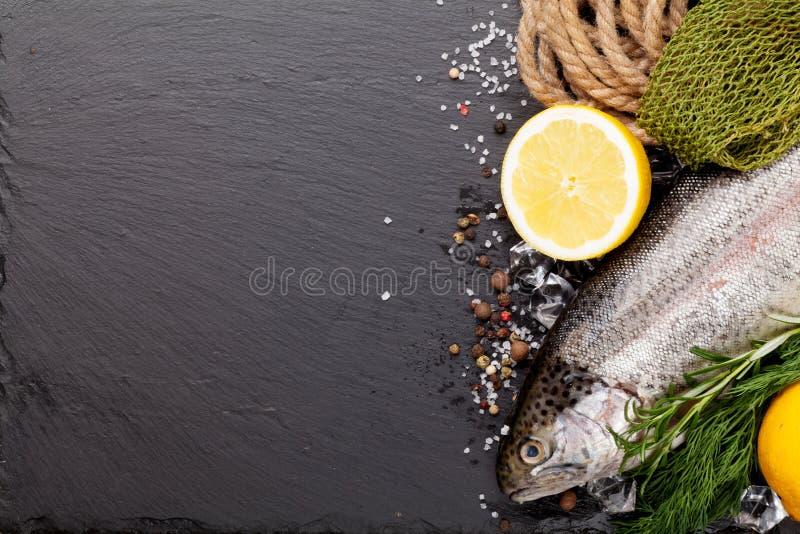 新鲜的未加工的虹鳟鱼和捕鱼设备 免版税库存照片