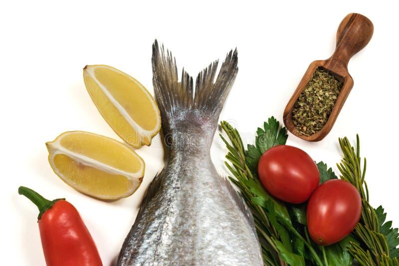 新鲜的未加工的Dorado尾巴或海鲷鱼用香料 库存图片