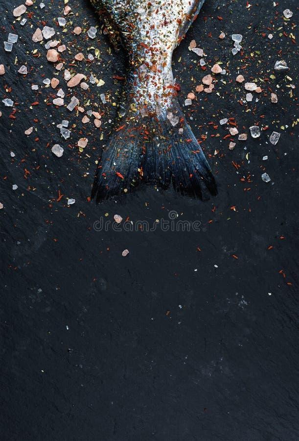 新鲜的未加工的Dorado尾巴或在黑板岩石头的海鲷鱼上用香料和盐 免版税图库摄影