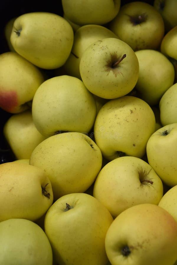 新鲜的极品苹果在农夫市场上 库存照片