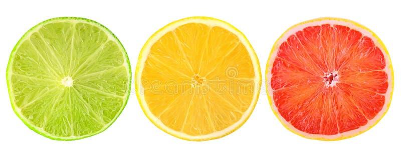 新鲜的柑橘水果在白色切成了两半隔绝 免版税图库摄影