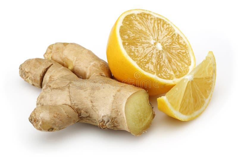 新鲜的柠檬用姜 库存图片
