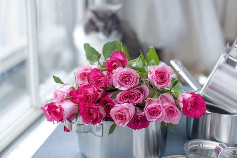 新鲜的桃红色玫瑰花束,在平底深锅由钢制成,在灰色石背景 在视窗附近 家庭猫 自由地方 库存图片
