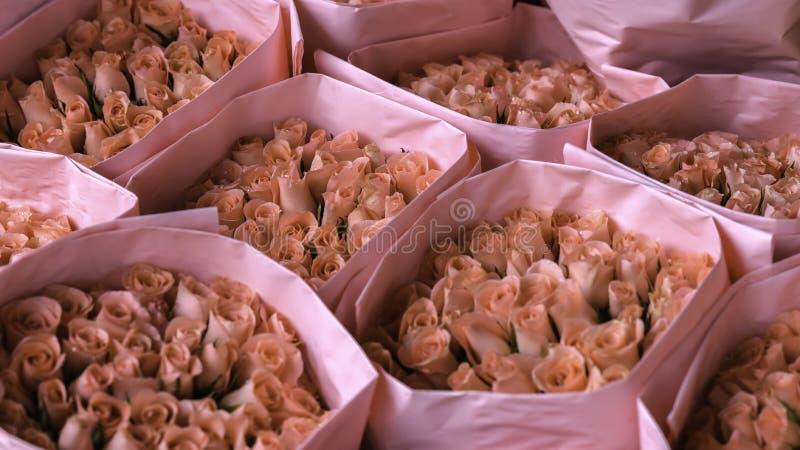 新鲜的桃红色玫瑰花束  免版税库存照片