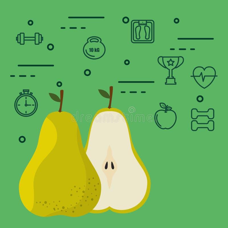 新鲜的梨素食主义者食物 向量例证