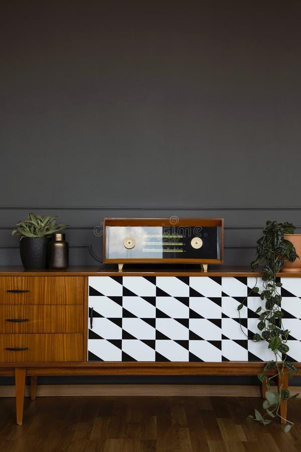 新鲜的植物和在木碗柜安置的葡萄酒收音机 免版税库存图片