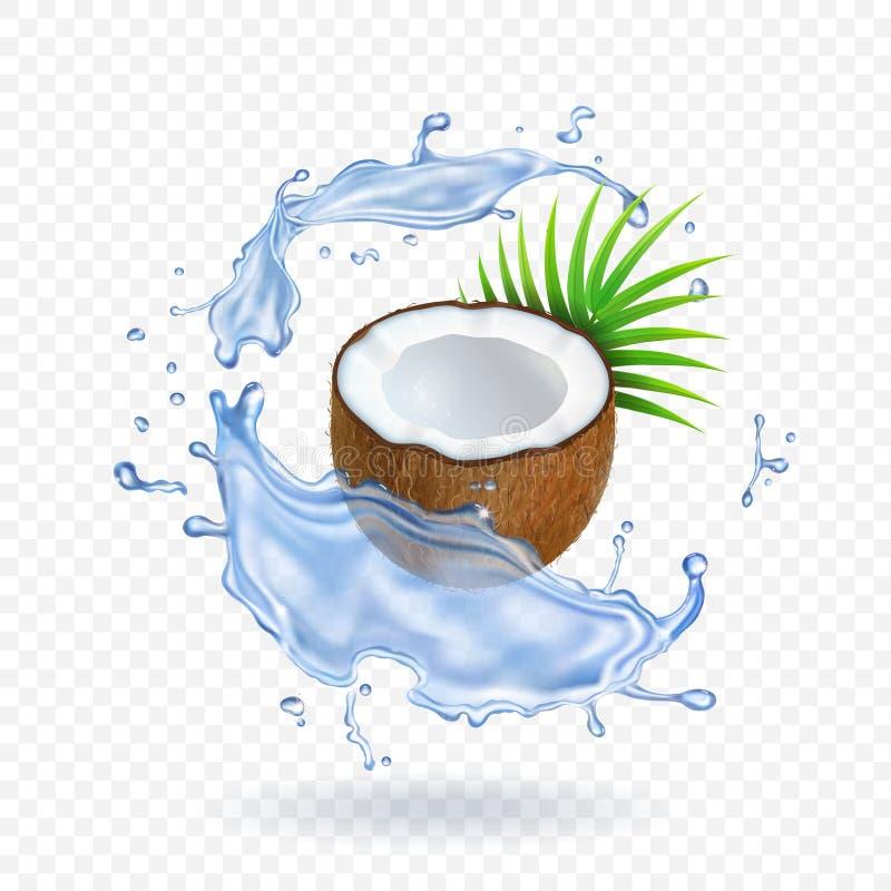 新鲜的椰子片断与叶子的在水中飞溅现实传染媒介例证 皇族释放例证