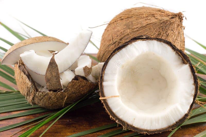 新鲜的椰子以varios形式 免版税库存图片