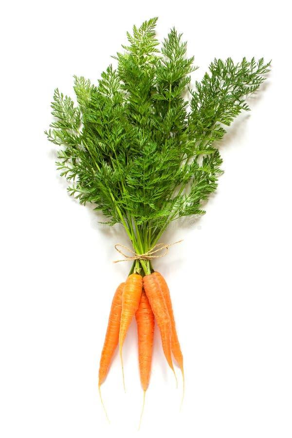 新鲜的橙色水多的红萝卜束boundle与豪华的绿色上面的栓与在白色背景的绳索孤立 库存图片