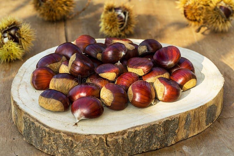 新鲜的欧洲栗木 在土气和木桌上的栗子 免版税库存图片