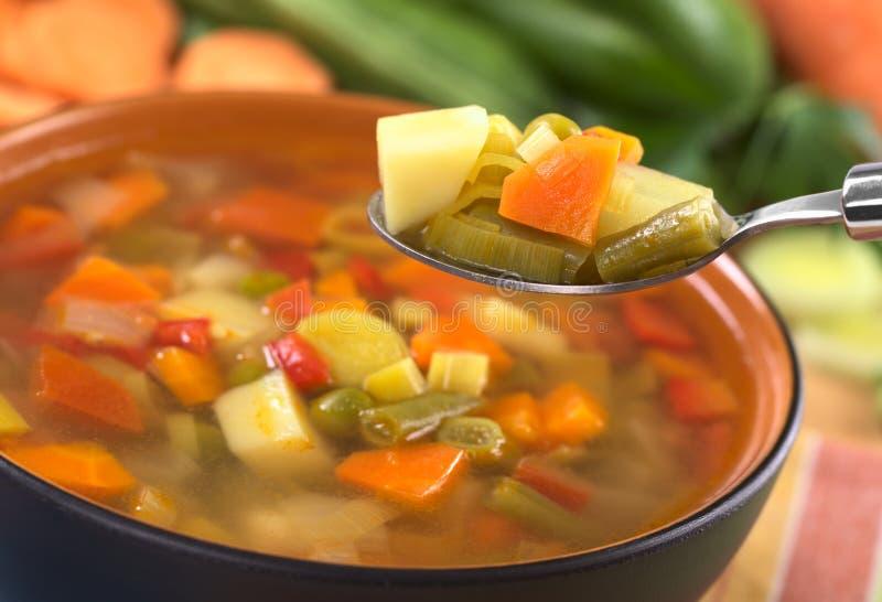 新鲜的汤蔬菜 库存图片