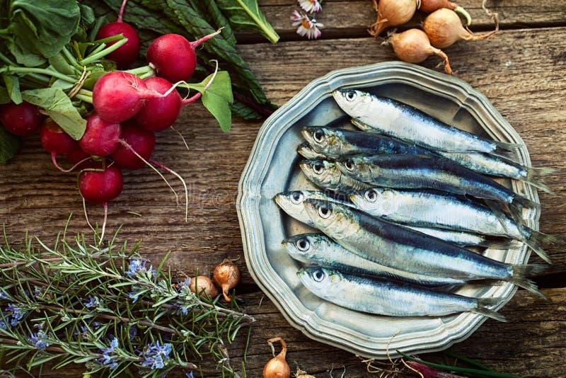 新鲜的沙丁鱼 图库摄影