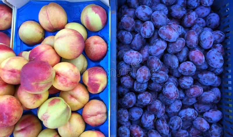 新鲜的油桃和紫色李子,希腊街市 库存图片