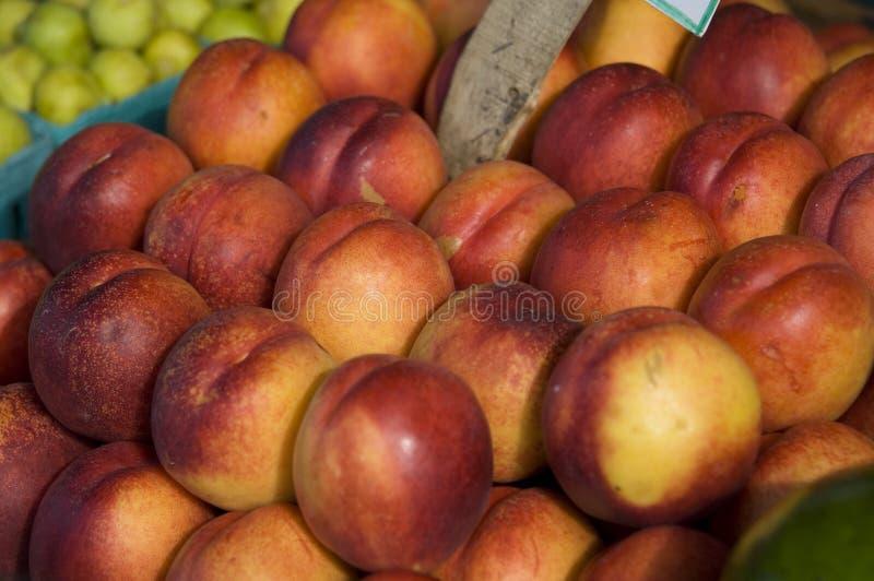 新鲜的油桃 库存照片