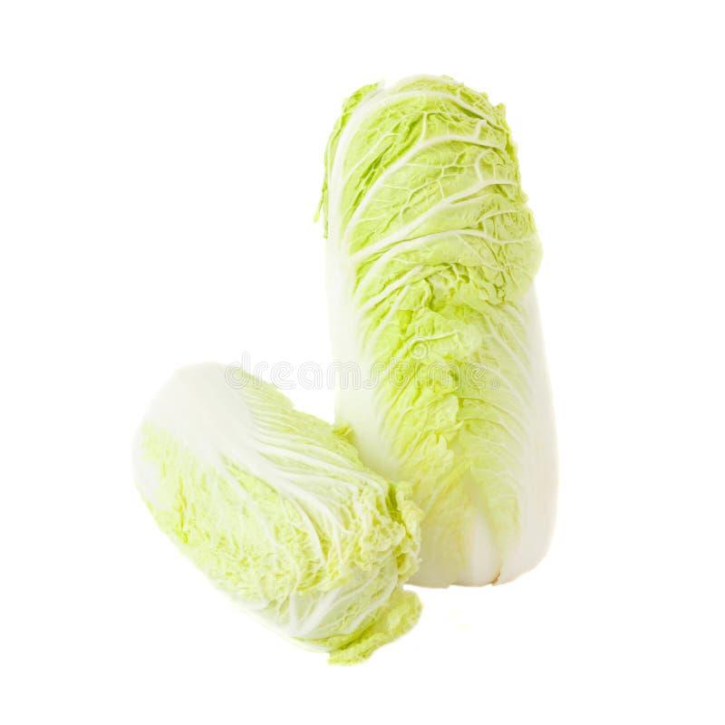 新鲜的浅绿色的napa圆白菜,隔绝在白色 库存照片