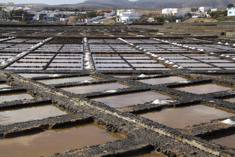 新鲜的海盐 库存照片
