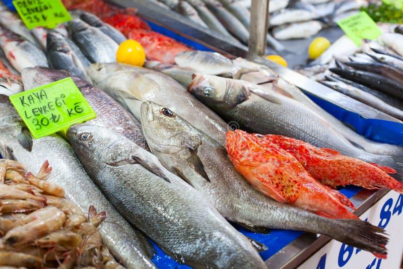 新鲜的海鲜在土耳其鱼市上 库存图片