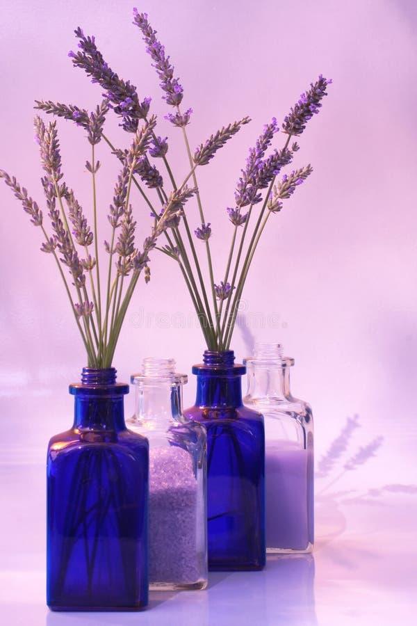 新鲜的淡紫色产品 免版税库存图片
