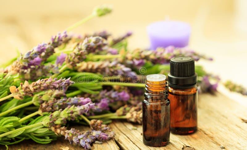 新鲜的淡紫色和精油在木背景 免版税图库摄影