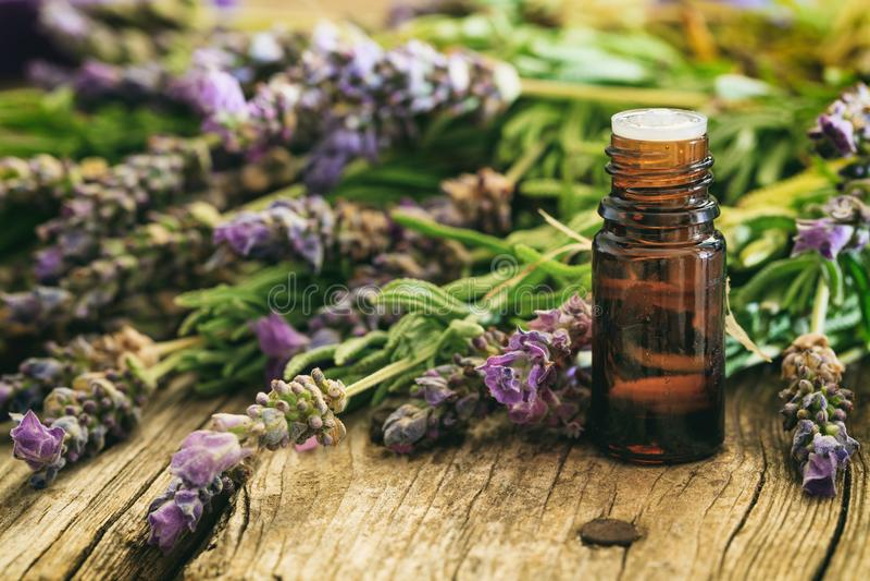新鲜的淡紫色和精油在木背景 免版税库存照片