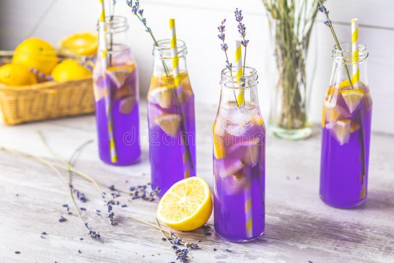 新鲜的淡紫色紫罗兰色鸡尾酒用柠檬和冰 免版税库存图片