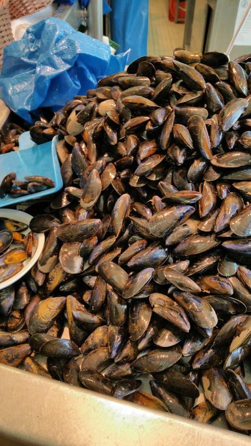 新鲜的淡菜在鱼市摊位堆了高 免版税库存照片