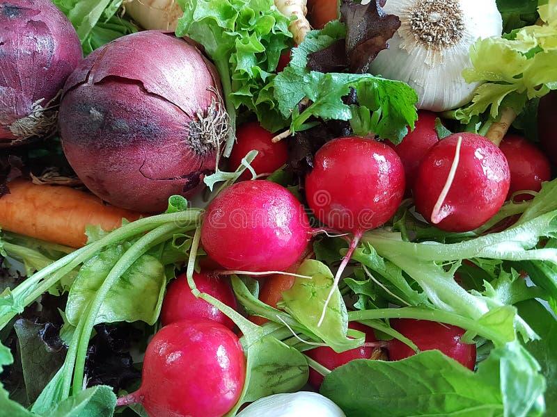 新鲜的混杂的菜健康食物红萝卜撇蓝, 免版税库存照片