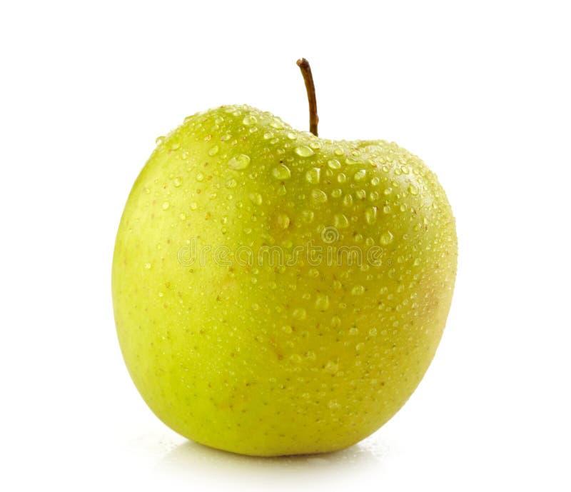 新鲜的湿苹果 库存照片