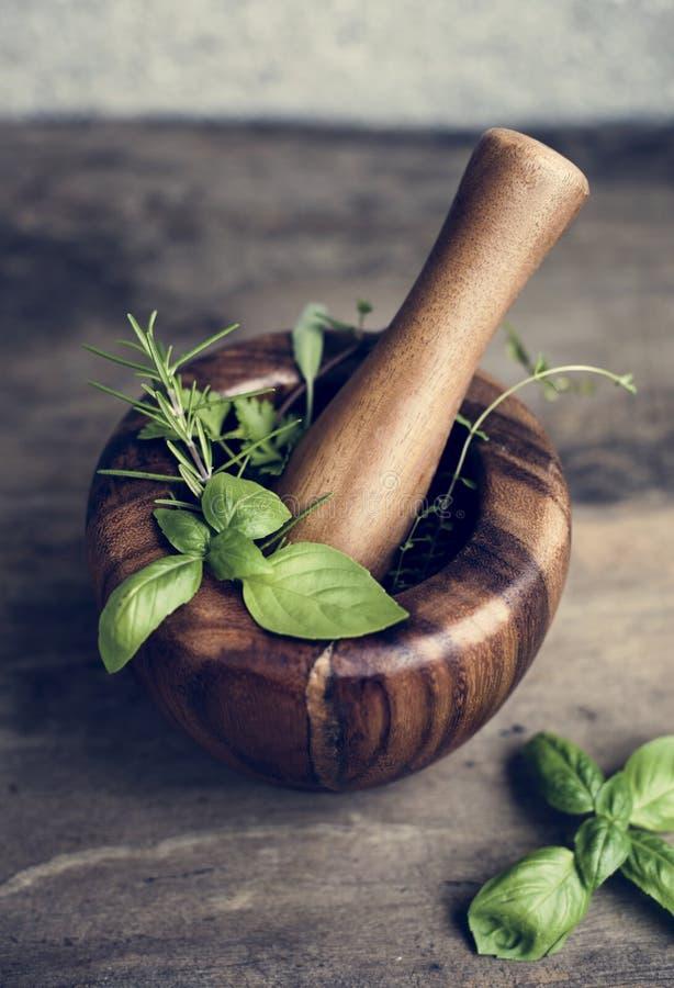 新鲜的烹调草本特写镜头在木灰浆和杵的 免版税库存照片