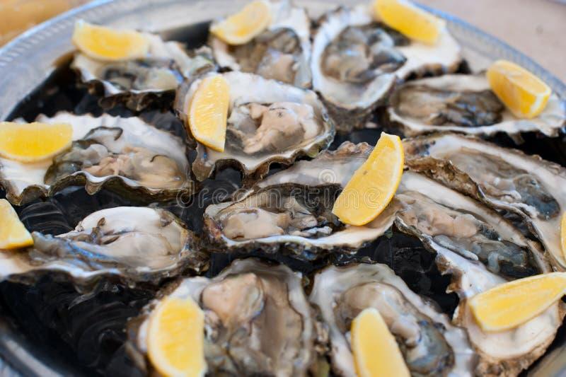 新鲜的牡蛎在冰和柠檬盘子说谎  库存图片
