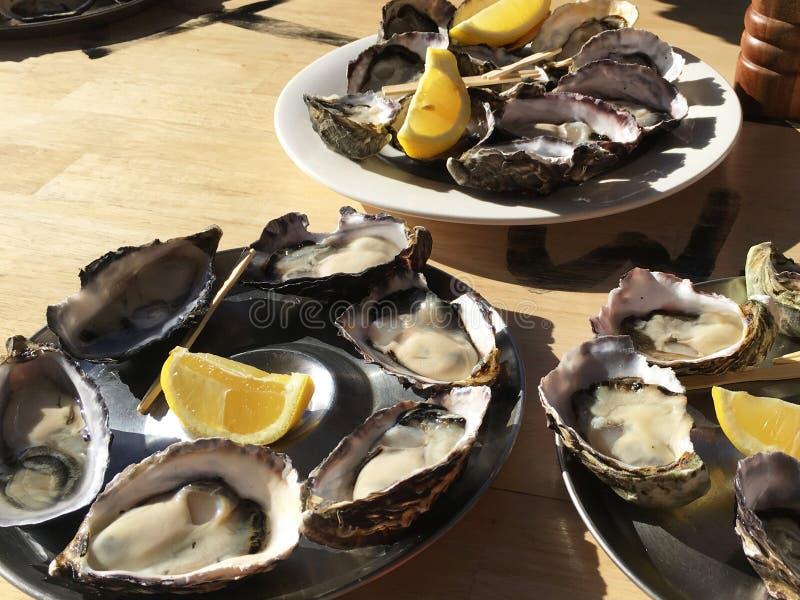 新鲜的牡蛎片断在一块白色板材的用大豆Yuzu调味汁和大蒜 库存图片